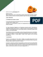 Ficha Tecnica Pijuayo