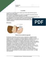 SEMILLA_MOD_I_interior-0056-0247.pdf