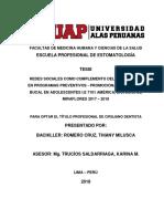 tesis 2019.pdf