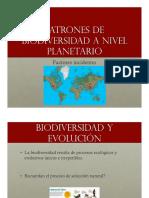 2 Patrones Biodiversidad.pdf