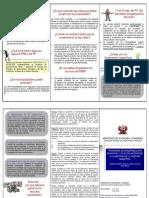 TRIPTICO_PMM_PI.pdf