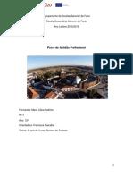 PAP (1).docx