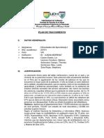 PLAN DE TRATAMIENTO (1).docx