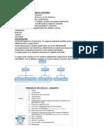 organizacion-y-metodos rizabal parcial.docx