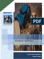 SEGURIDAD-E-HIGIENE-INDUSTRIAL-PARTE-2.pdf