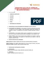 MODELO DE  PROGRAMA.PS. SALUD.doc
