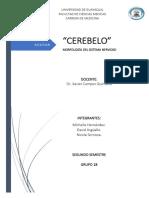 EXPO PORTAFOLIO CEREBELO.docx