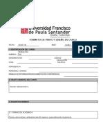 FORMATO DE PERFIL Y DISEÑO DE CARGO (2).docx