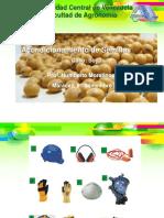Acondicionamiento de semillas soya 2019 2.pdf