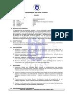 silabo_Análisis Matemático I.pdf