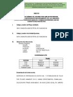INFORME B-2 CONTENIDO MINIMO DE INVERSION-ESTABILIZACION LOSA.docx
