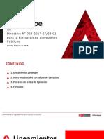 Directiva Para La Ejecución 19.02.2018 (1)