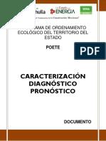 CARACTERIZACION-DIAGNOSTICO_PRONOSTICO.docx