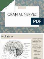 Cranial Nerves Neuroanatomy
