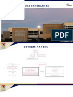 Determinantes (2)