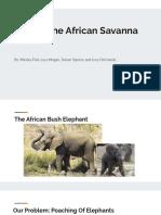 saving the african savanna
