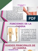 -Patologia de La Cadera Diapositiva