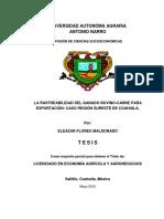 63426 FLORES MALDONADO, ELEAZAR  TESIS-convertido.docx