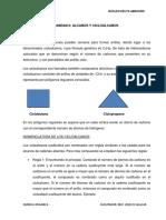 guía II de química orgánica.docx