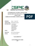 INFORME-LIGAMIENTO(1).docx