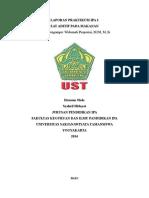 LAPORAN_PRAKTIKUM_IPA_3_ZAT_ADITIF_PADA.doc