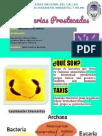 Pros Teca Das