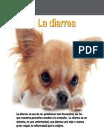 AV 39 Diarrea