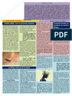 Boletín Psicología Positiva. Año 10 Nº 21