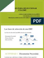 Las Fases Para Seleccionar Una ERP