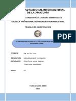 INFOME DE ANALISIS.docx