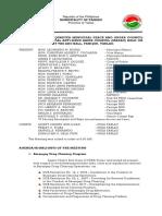 MPOC-Minutes-sample (1).docx