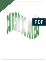 Curso_ de_Aneis.pdf