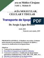 4. Trasporte de Lipoprot