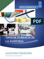 REVISTA DE AUDITORIA.docx