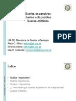 208 Suelos expansivos - colapsables - crioticos.pdf
