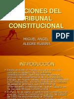 Funciones Del Tribunal Constitucional