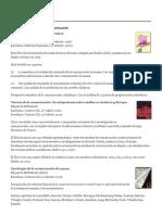 Teorías y Estudios de La Comunicación _ Miquel de Moragas Spà