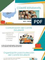 COMITÉ ESTUDIANTIL- FUNCIONES