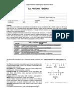 Guia de 4 Medio Proteinas y Enzimas