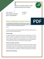 IMPACTOS-POTENCIALES.docx