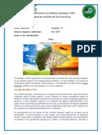 IMPACTOD-AMBIENTALES (1).docx