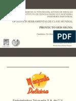 Proyecto seis sigma.pptx