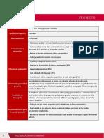 Guía de Proyecto - S1 (1)-1