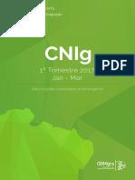relatório final cnig