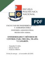 PROTECCIÓN ANIMAL - Camarón ENFERMEDADES.docx