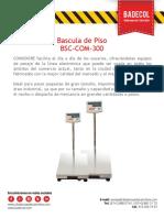 Ficha Tecnica Plataforma 300Kg
