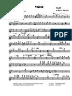 Torero - salsa.pdf