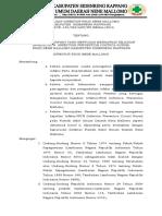 SK IPCN RSUD NENE MALLOMO.docx