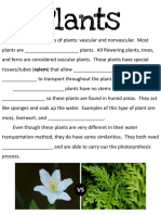 plants packet