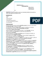 practica de quimica.docx